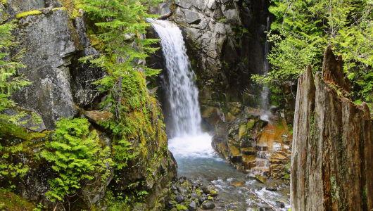 Mt. Rainier NP - WA
